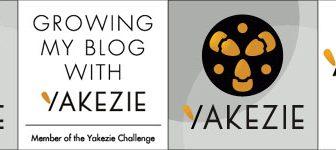 Yakezie network