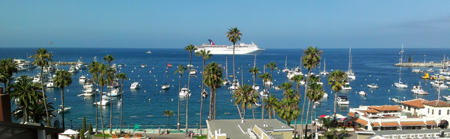 Every Sunday's Special Links: Catalina Island Edition