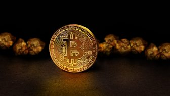 Is Bitcoin Worth the Risk?